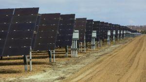 Solar Panels Ground Level